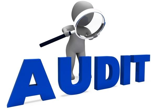 Financial Audit logo